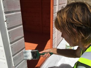 Cousins Shed Donation DIY SOS Picture 6