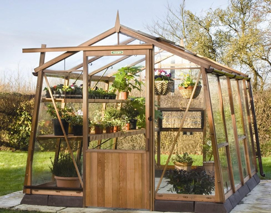 Alton Amateur Wooden Greenhouse