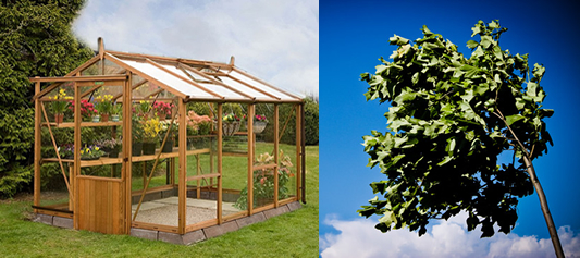How to prepare your greenhouse for strong winds