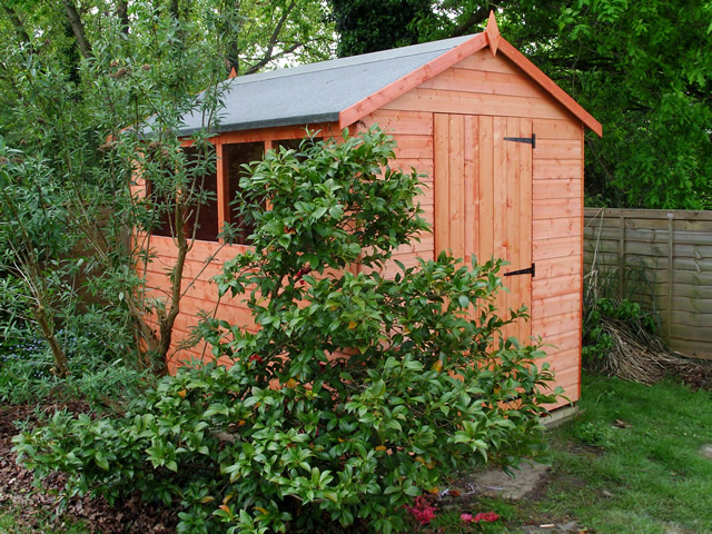 8 x 6 Apex Shed Cowfold