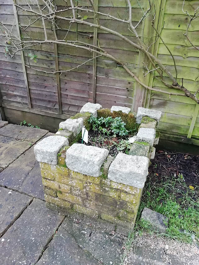 Raised planter that we removed