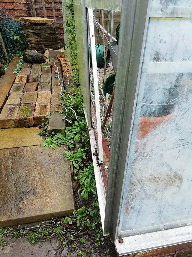 Murrell Survey Pic Damaged Side
