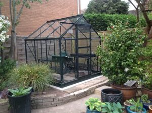 New Greenhouse Installation Popular 6x6 - Tyler
