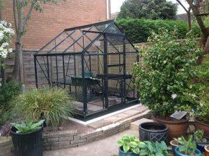 New Greenhouse Installation Popular 6x6 - Tyler