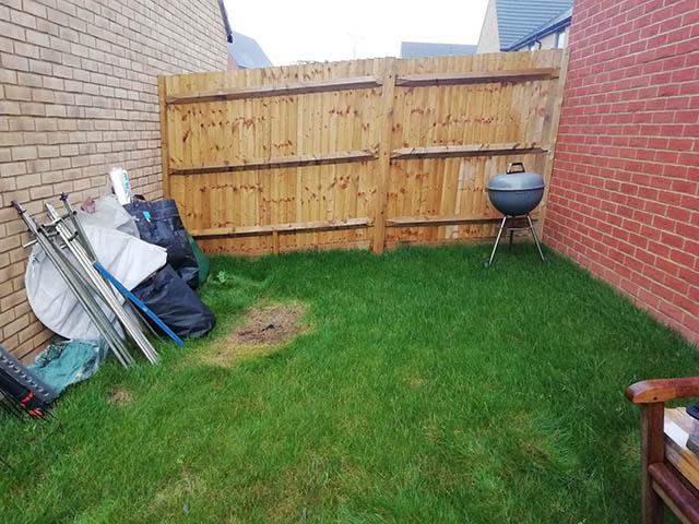 Garden Building Survey Picture - Richardson