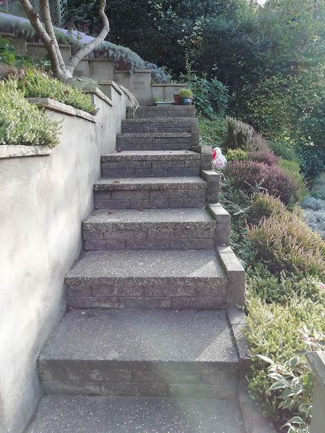 Rear Access to Garden - Wood